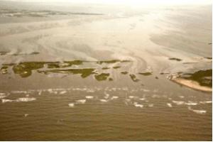 Oil Slick in the Gulf